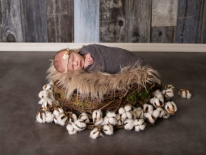 newborn photos Prescott AZ